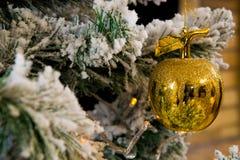 Mela dorata sull'albero di Natale Immagini Stock Libere da Diritti