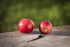 Mela fresca in autunno sul dettaglio della tavola Immagini Stock Libere da Diritti