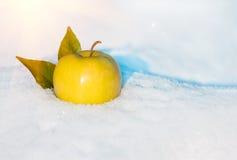 Mela gialla nella neve con prima del Natale Fotografie Stock