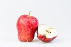 Mela Red Delicious Fotografie Stock Libere da Diritti