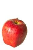 Mela rossa Immagine Stock Libera da Diritti