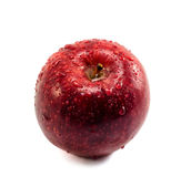 Mela rossa con le gocce Fotografia Stock Libera da Diritti