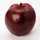 Mela rossa di McIntosh Fotografia Stock