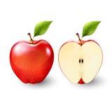 Mela rossa e una metà della mela, frutta, trasparente, vettore Fotografia Stock Libera da Diritti