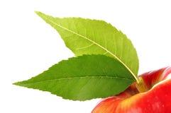 Mela rossa fresca con la foglia verde isolata su bianco Immagine Stock Libera da Diritti