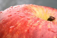 Mela rossa a macroistruzione Fotografie Stock