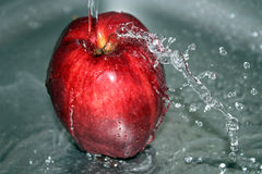 Mela rossa su acqua Immagini Stock