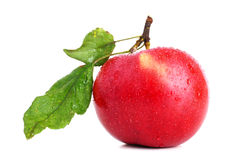 Mela rossa su bianco Fotografia Stock