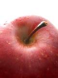 Mela rossa su bianco - macro fotografia stock libera da diritti