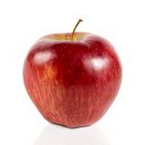 Mela rossa su un fondo bianco Fotografia Stock Libera da Diritti