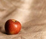 Mela rossa sul panno della tela di iuta Immagini Stock