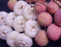 Mela succosa indiana del litchi e di Java della frutta di estate sia presente su fondo nero fotografie stock