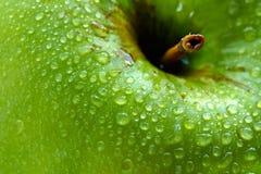 Mela verde bagnata Fotografie Stock