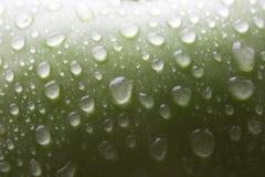 Mela verde bagnata Immagini Stock