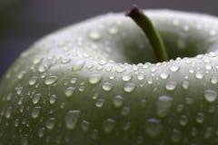 Mela verde bagnata con il gambo Immagine Stock Libera da Diritti