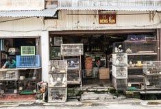 Melaka stad Arkivfoton