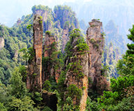 Melaleuca rock in Tianzi mountain Royalty Free Stock Photos