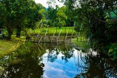 Melanau plemienia bambusa most Fotografia Stock