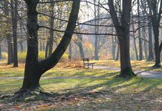 Melancholic autumn park. Benches in the park and trees with colorful leaves on melancholic autumn morning Stock Photo
