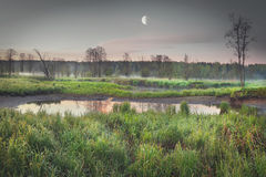 Melancholic sad landscape of nature in the early morning on the river bank with a big moon. Stock Photo