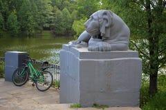 Melancholic stone lion guards a parked bike royalty free stock photos