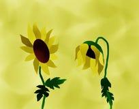 Melancholiczny słoneczników Malować Obraz Stock