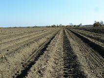 Melancholy autumn plowed field under blue sky royalty free stock image