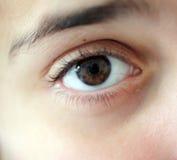 Melancholy brown eye. Brown eye of a young girl Royalty Free Stock Image