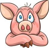 Melancholy cartoon pig Stock Photos