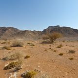 Melancholy and emptiness of the desert in Israel. Melancholy and emptiness of the rocky hills of the Negev Desert in Israel. Breathtaking landscape and nature stock photography