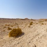 Melancholy and emptiness of the desert in Israel stock photography