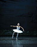 Melancholy linger at Lakeside-The Swan Lakeside-ballet Swan Lake Royalty Free Stock Photography