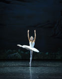 Melancholy linger at Lakeside-The Swan Lakeside-ballet Swan Lake Stock Photography