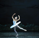 Melancholy linger at Lakeside-The Swan Lakeside-ballet Swan Lake Royalty Free Stock Photography