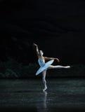 Melancholy linger at Lakeside-The Swan Lakeside-ballet Swan Lake Royalty Free Stock Photos