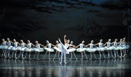 The melancholy of Ojta let Prince very distressed-ballet Swan Lake Royalty Free Stock Photo