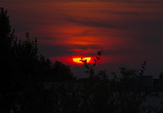 Melancholy Sunset. A dramatic sunset in Brooklyn Park, Minnesota royalty free stock photos