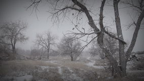 Melancholy Winter Landscape 2 stock footage