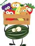 Melancia engraçada com uma caixa da fruta Imagens de Stock