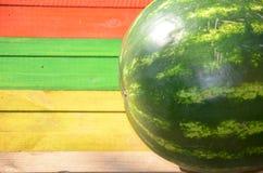 Melancia inteira em um fundo multi-colorido Foto de Stock