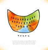 Melancia multicolorido.  Melão ilustração stock