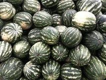 melancias Imagem de Stock