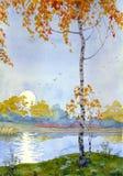 Melancolía del otoño Imagen de archivo libre de regalías