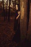Melancolia do outono Foto de Stock Royalty Free
