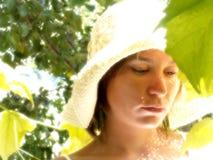 Melancolia no grapevine Foto de Stock