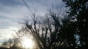 Melankolisk solnedgång arkivbild