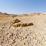 Melankoliskt och tomhet av öknen i Israel arkivbilder