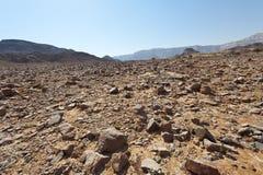 Melankoliskt och tomhet av öknen i Israel fotografering för bildbyråer