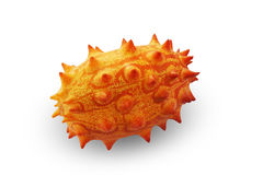 Melano, Kiwano, or Horned Melon Fruit Royalty Free Stock Photo