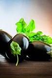 Melanzana e spinaci su legno Fotografia Stock